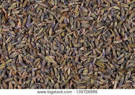 Dried Lavender Organic Tea