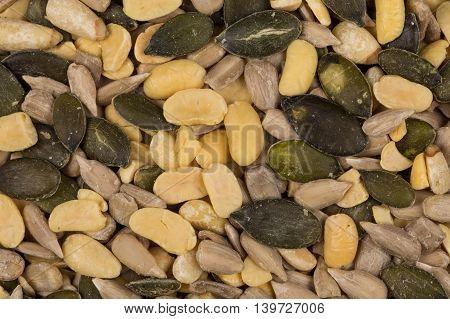Mixed Seeds Close Up