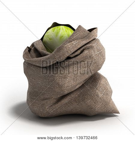Cabbage Bag 3D Render On White Backgrownd