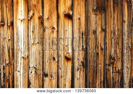 Abstract shot of charred wood. Grunge texture background