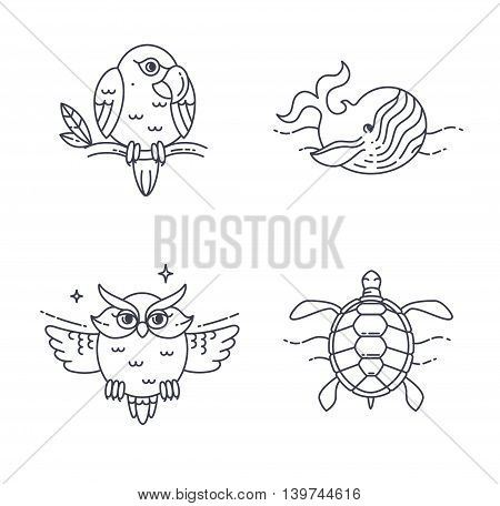 Wild exotic animals line icons set. Vector Parrot, Owl, Wheel and Turtle.