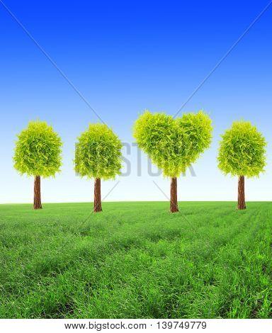 Heart shape tree on green field on blue sky background