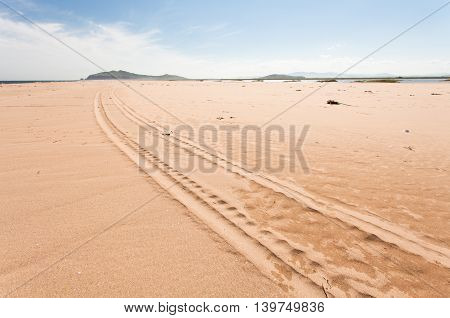 Scene of a long car trace on the beach on sunny day. Wide angle.