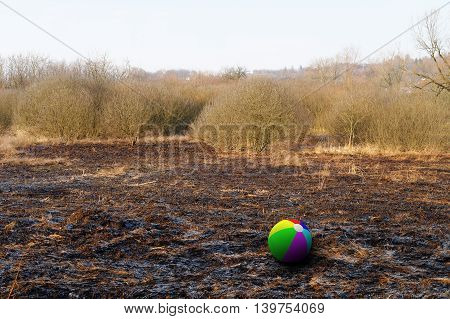colorful beach ball on the burnt grass field