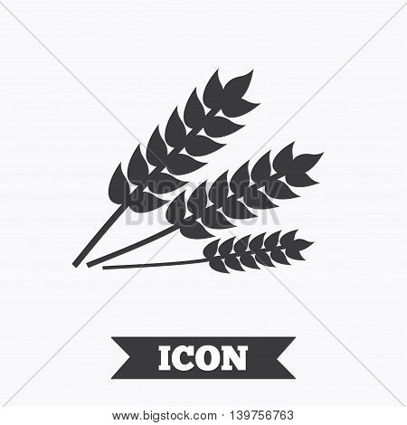 Agricultural sign icon. Gluten free or No gluten symbol. Graphic design element. Flat wheat symbol on white background. Vector