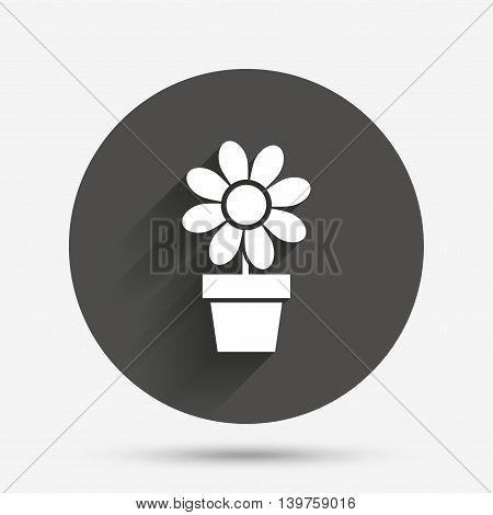 Flowers in pot icon. Bouquet of flowers with petals. Macro sign. Circle flat button with shadow. Vector