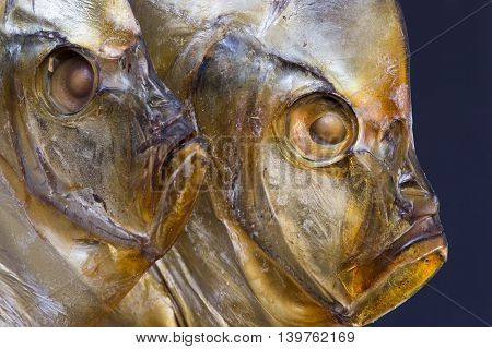 Two heads close-up of smoked sea fish