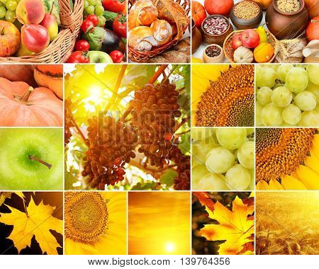 Autumn collage of fruits, vegetables, yellow leaves. Wide format. It can be used to skinali.