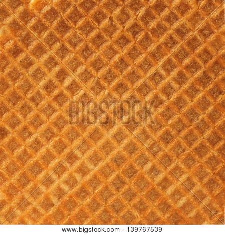 texture of Waffle