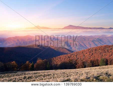 Autumn Landscape with beech forest in the mountains. Beautiful sunrise with sunbeams. Mountain peaks in the clouds. Collage of two frames