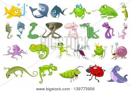 Set of funny sea creatures, creeping things, insects. Collection of cute colourful fishes, frogs, snakes, chameleon, mosquito, fur seal, sea horse. Vector illustration isolated on white background.