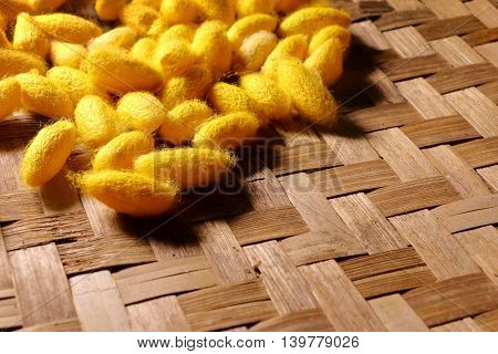 close-up of yellow silkworm cocoon in basket.
