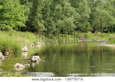 river with nice green vegetations on its banks reflecting on the calm water surface