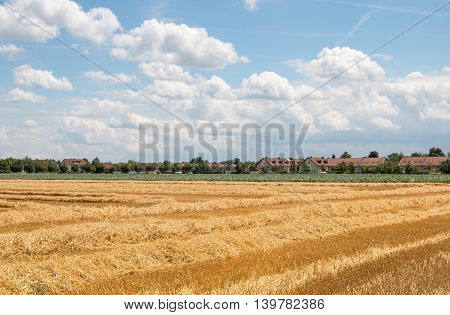Harvested Field At The Outskirts Of The Village