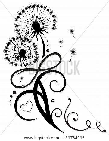 Spring time flowers, dandelion with infinity, for Valentine's Day