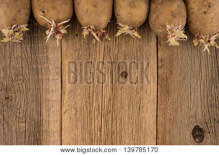Sprouted potatoes for planting on a wooden surface