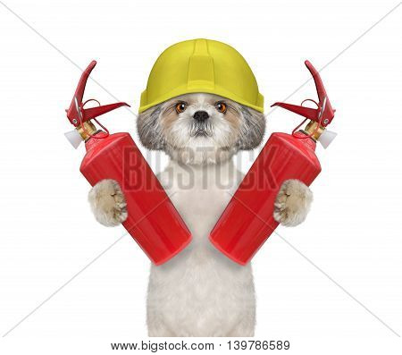 Brave firefighter dog is ready to work -- isolated on white
