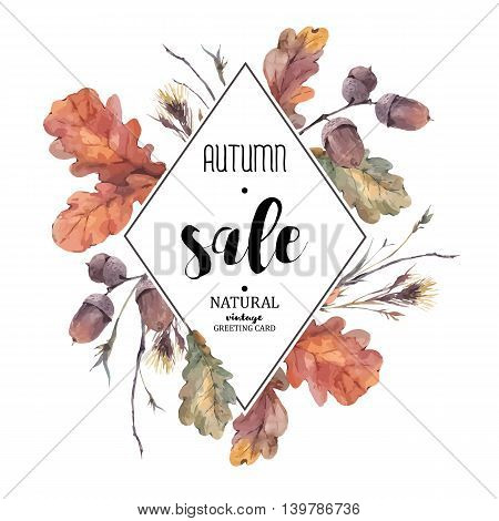 Autumn vector vintage bouquet of twigs, yellow oak leaves and acorns. Botanical illustrations. Sale card. Isolated on white background