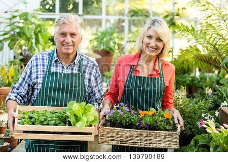 Portrait of happy couple holding plant crates at greenhouse