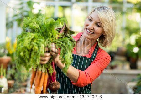 Happy gardener holding fresh carrots at greenhouse