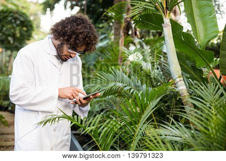 Male scientist using digital tablet while examining plants at greenhouse
