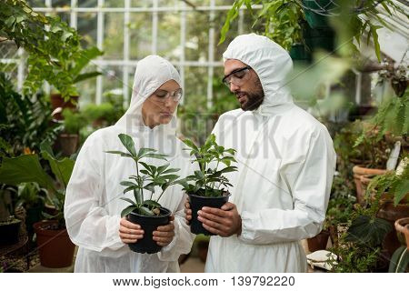 Male and female scientists in clean suit holding potted plants at greenhouse