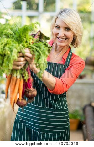 Portrait of smiling gardener holding fresh carrots at greenhouse