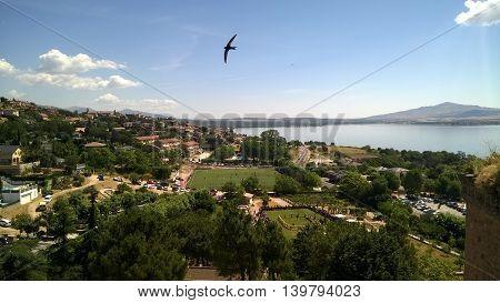 Spain, Manzanares el Real, swallows in the air