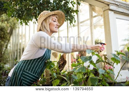 Side view of woman spraying water on plants outside greenhouse