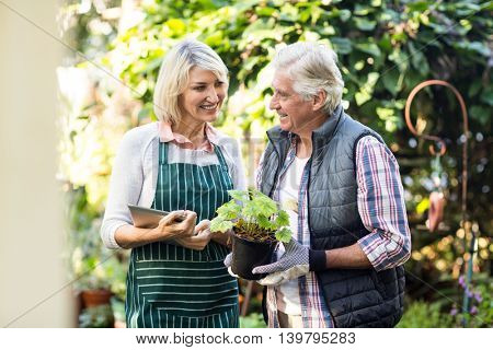 Happy gardeners standing with potted plant and clipboard outside greenhouse
