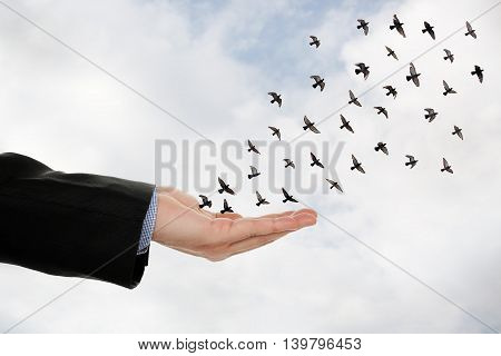 flock of birds flying off a male hand abstract concept