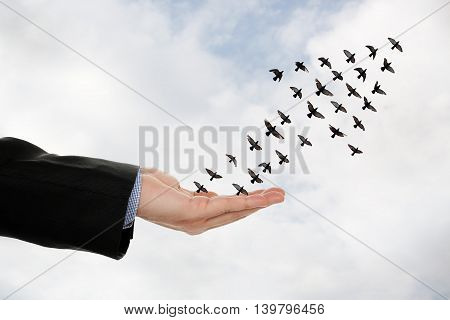 flock of birds forming an arrow flying off a male hand success concept