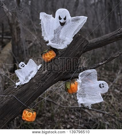 Ghosts and pumpkins in the forest, Halloween still life