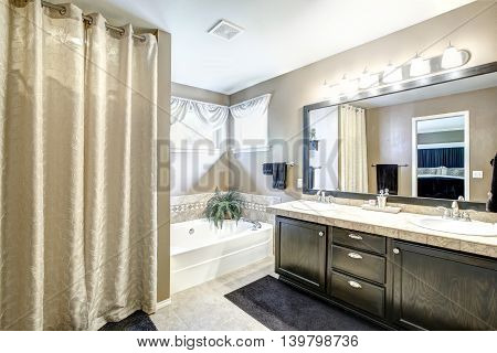 Bathroom Interior With Black Cabinet And Large Mirror
