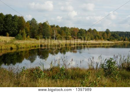 Wood Lake In The Autumn