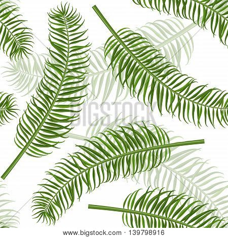 Seamless palm leaf pattern. Tropical leaves vector background for print or website. Tile able design.