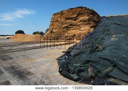 heap of biomass from a biogas plant against the blue sky with clouds industry concept for renewable energy and environmental protection