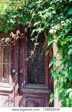 ancient building with wooden door and ivy