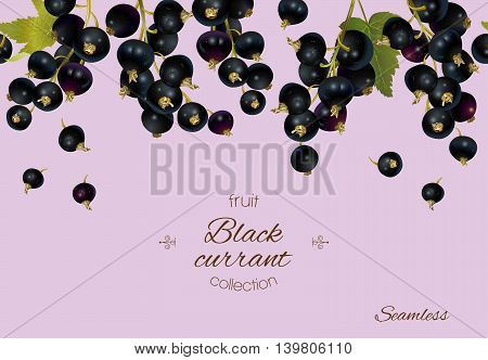 Vector black currant banner. Background design for tea, ice cream, jam, natural cosmetics, candy and bakery with black currant filling, health care products. With place for text.