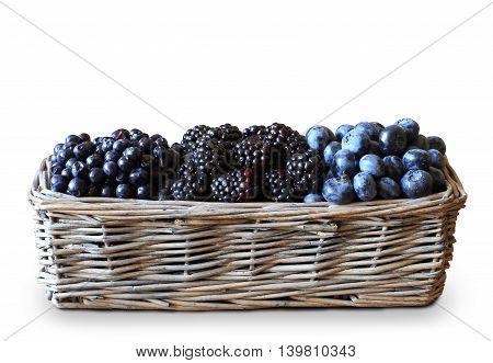 Forest berry harvest in a basket, blackberries, blueberries