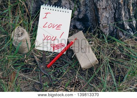 Love Message On Pinecones And Pine Needle In The Autumn Forest