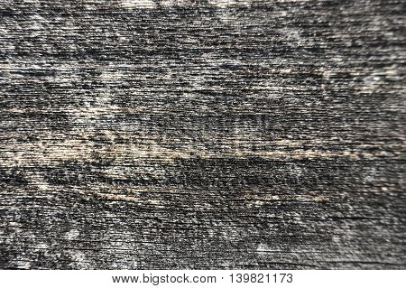 Shot of old wooden textured background close up