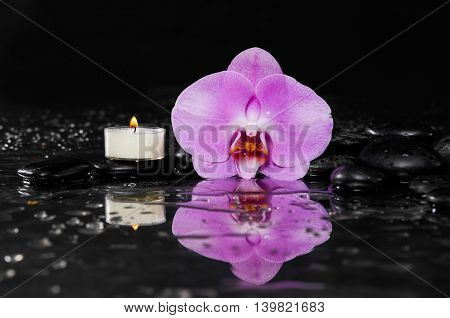 still life with pink orchid and candle on black stones