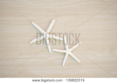 Beautiful two star fish on wooden background