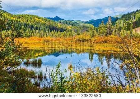 Warm autumn day in park Jasper in Canada. Charming Patricia Lake among evergreen forests, yellow bushes and far mountains