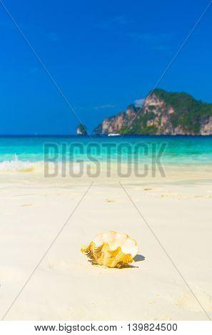 Beach Pearl Paradise Blue