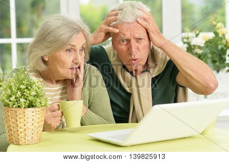 Senior couple portrait with laptop at home