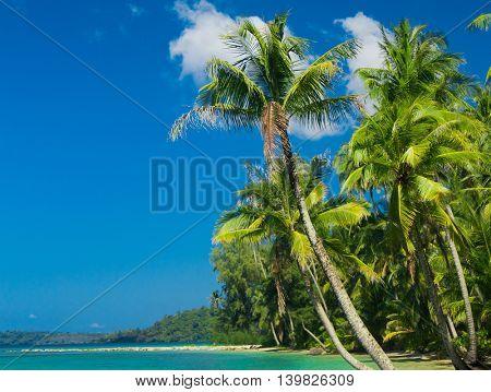 Beautiful Beach Idyllic Island