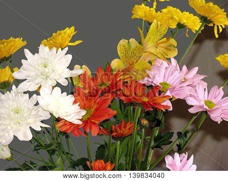 Special Effects Painting Of Various Flowers 01