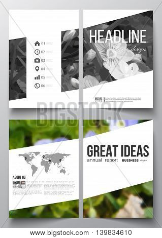Set of business templates for brochure, magazine, flyer, booklet or annual report. Floral background, blurred image, flowers in green grass closeup, modern template.